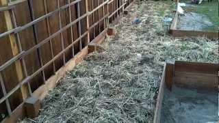 Building A Garden Trellis (45 Foot Long) - Part 1