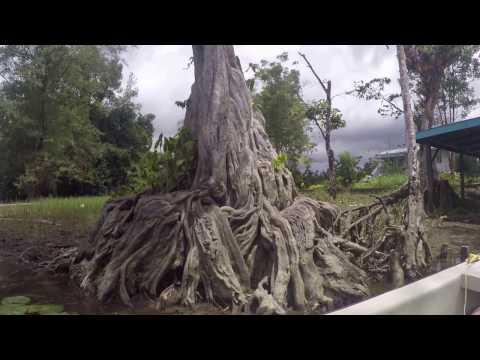 Guyana July 2016: Touring the Pomeroon