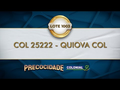 LOTE 1003   COL 25222