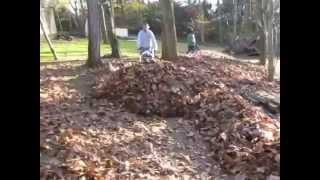 Walk behind mower leaf plow