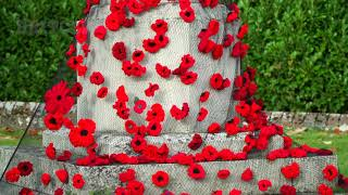 Sussex village remembers WW1 with a carpet of poppies