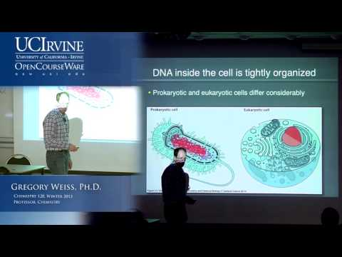 Introduction to Chemical Biology 128. Lecture 05. Non-Covalent Interactions, DNA.