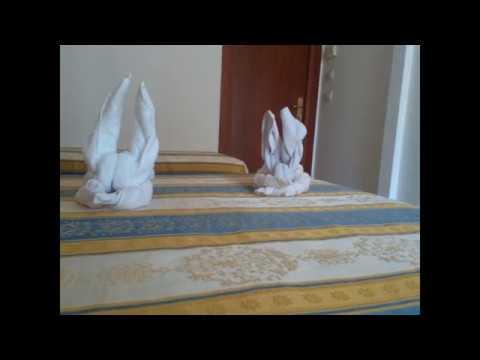 Come Piegare Gli Asciugamani In Albergo : Come fare un coniglio con gli asciugamani youtube