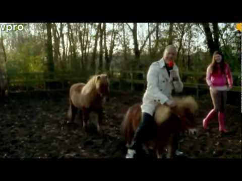 Trendy Shit: Shetland Pony Walking.mp4
