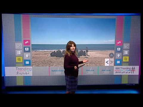 #بي_بي_سي_ترندينغ | التحقيق مع مدرس في #تونس بعد إلقائه درسا للتلاميذ على شاطىء البحر في #نابل