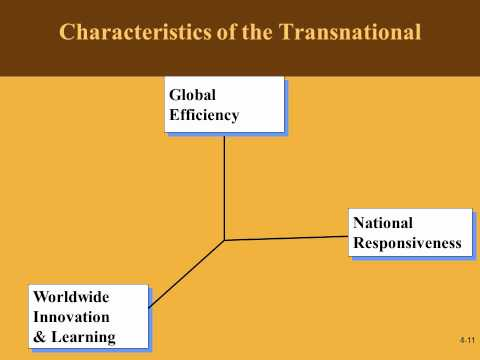 Developing a Transnational Organization