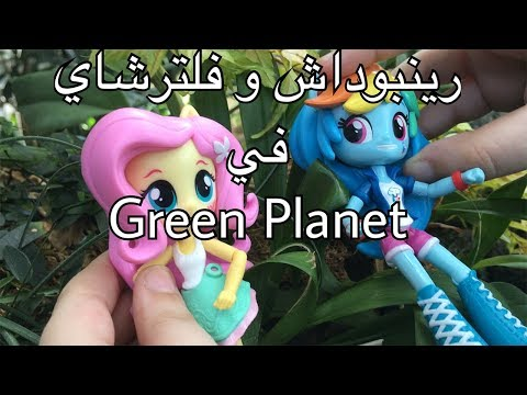 رينبو داش وفلتر شاي في Green Planet !