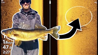 BEST Tips To Catch More Walleyes