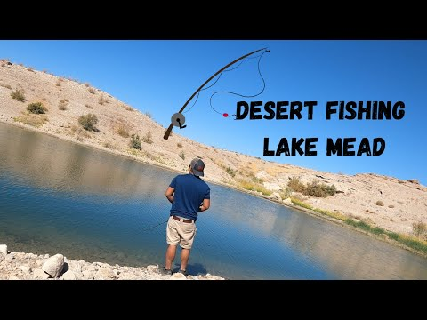Fishing In The Desert?! 1st Time Bass Fishing At Lake Mead