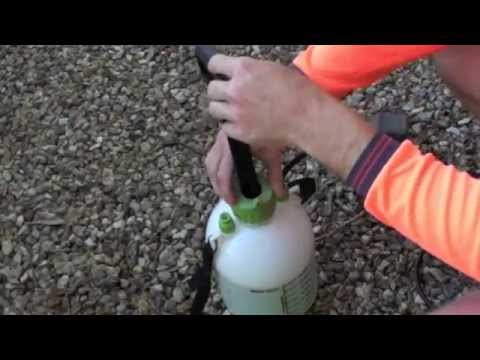 HOW TO USE WEED KILLER SPRAY
