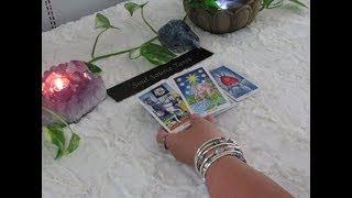 The Daily Vibe~New Partnership Perhaps~08/02~August 2 Daily Tarot Reading