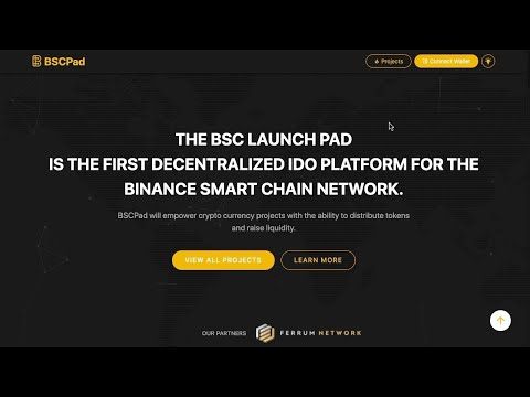 Binance Smart Chain - How To Get Into Pre-Sales/ Which Tokens & Farms To Use/ High Risk Projects!