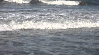 Atlantic Beach Florida Surf Report 6/3/2011