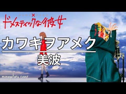 カワキヲアメク - 美波 (cover)