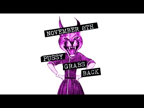 PUSSY GRABS BACK by Kim Boekbinder