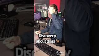 Discovery about dogs