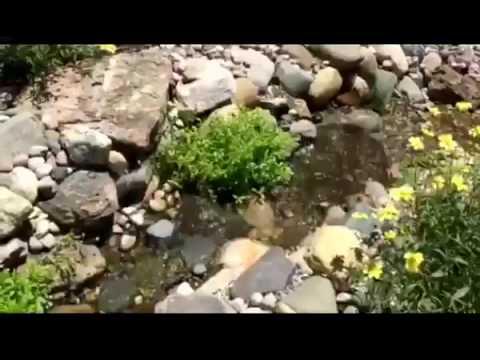 DIY Backyard WaterFall Project Complete
