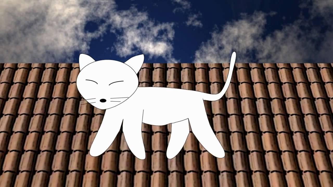 Gato Caminando En El Techo Youtube