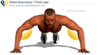 All Kinds Of Push Ups