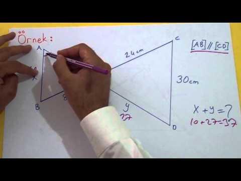 Benzerlik 2 Şenol Hoca Matematik