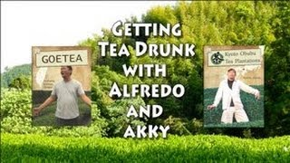 Tea Drunk with Alfredo and Akky