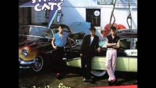 Stray cats Fishnet stockings