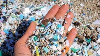 Мелкий пластик разрушает морскую экосистему (новости)