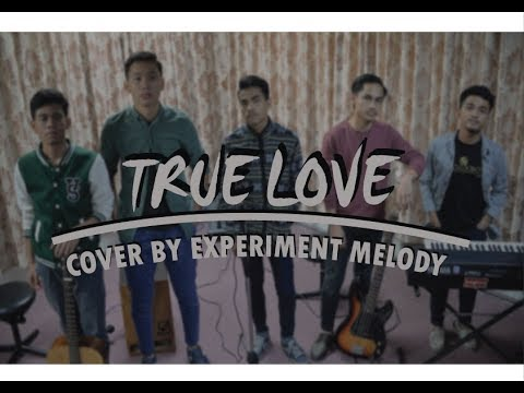 TRUE LOVE - Dhany Katahati (cover by Experiment Melody) OST #NHtruelove