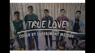 Gambar cover TRUE LOVE - Dhany Katahati (cover by Experiment Melody) OST #NHtruelove