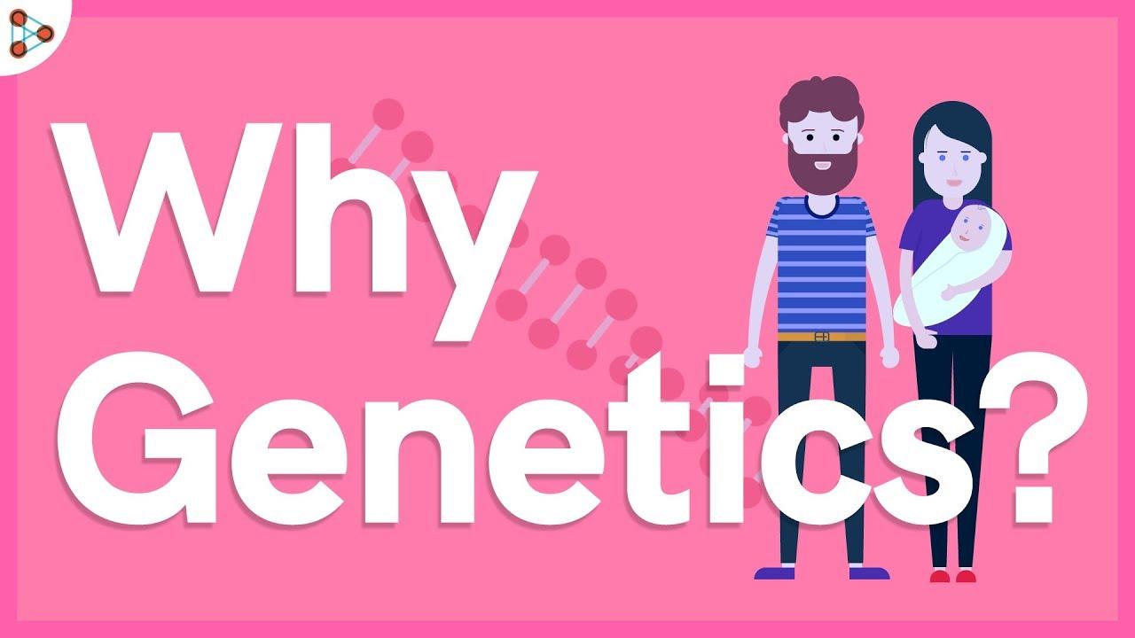 Download Why Genetics? - Lesson 1   Don't Memorise
