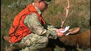 Wyoming Wildlife TV #3--Brucellosis