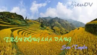 Trên Đồng Lúa Vàng - Sơn Tuyền