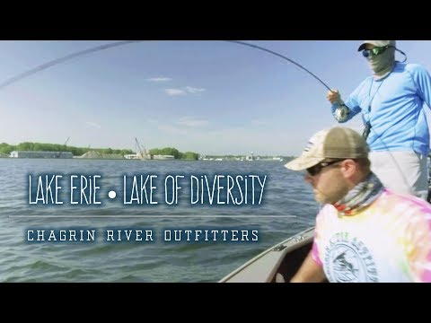 Lake Erie • Lake Of Diversity • Chagrin River Outfitters Guide Service