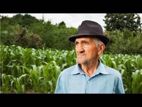 Como Tornar seu Sítio Lucrativo - Produtor Rural