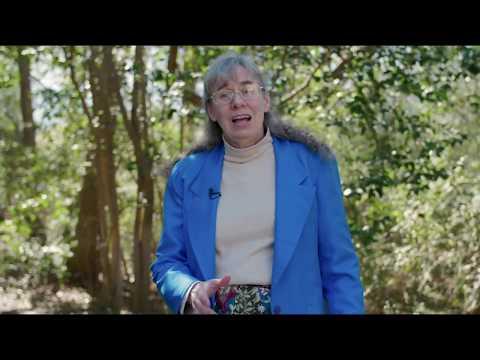 Answering Faith  - Dr. Bernadette Waterman Ward