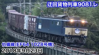 【JR貨物 迂回貨物列車9081レ 伯備線・山陰本線(EF64 1028号機・DD51 857号機) 2018.9.23】