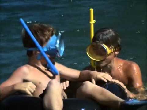Flipper, SOS Dolphin, song, 1964