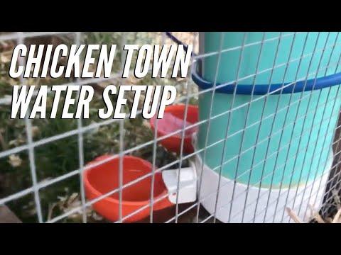 Chicken Town Water Setup | Farmer Brad