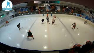Шорт хоккей Мастер-Тур матч Викинг Торнадо