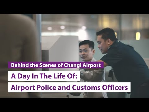 A Day In The Life Of: Airport Police and Immigration & Customs Officers