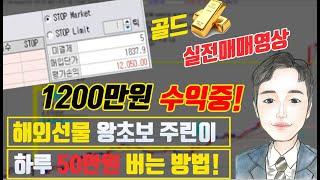 해외선물 나스닥 왕초보 주린이 하루 50만원 매일 수익내는방법 특강 ★