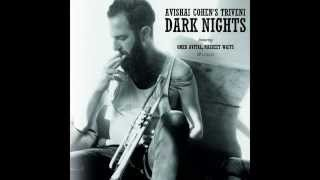 Shiny Stockings    AVISHAI COHEN