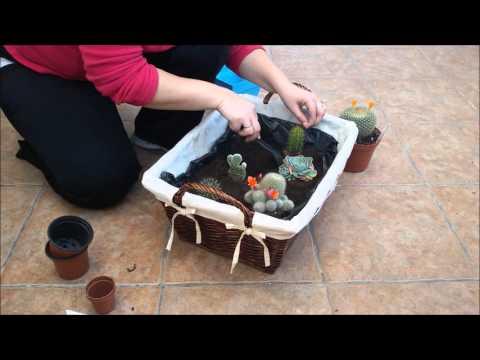 Cesta de mimbre con cactus youtube - Cestos de mimbre ...