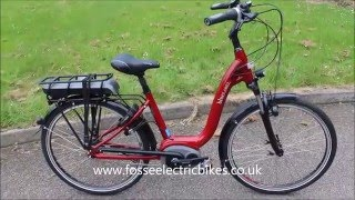 Ebike Electric Bike Review Blue Wave Label Riese & Mullar