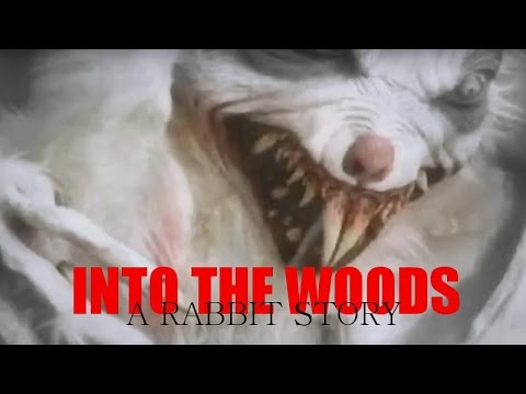 Into The Woods: A Rabbit Story