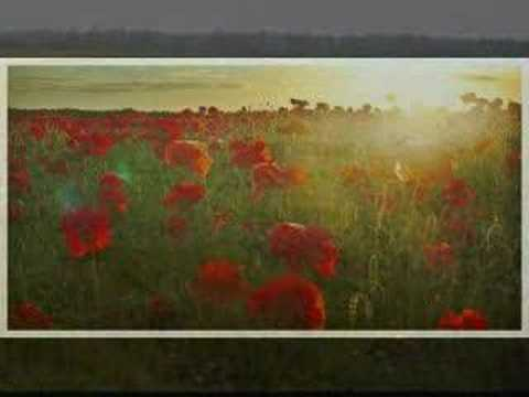 Eric Bogle  No Mans Land  Green Fields of France