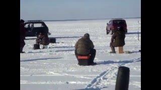Рыбалка Новосибирск.ОВХ.