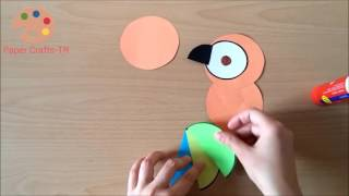 Parrot For Preschool Children