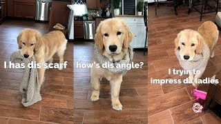 My Puppy Impresses the Ladies!