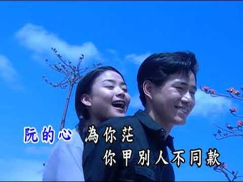 若沒愛你要愛誰 臺語KTV (曜新穎伴唱VCD) - YouTube